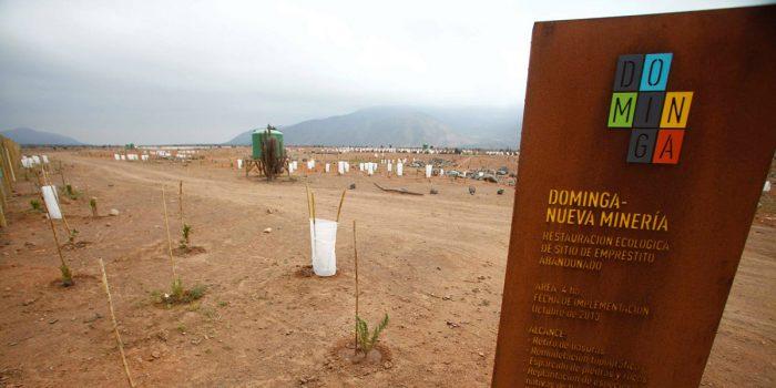 """Subsecretario de Mineríasobre proyecto Dominga: """"Todas las iniciativas de inversión que cumplan con la normativa ambiental son importantes (…) porque generan empleo""""."""