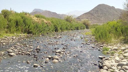 Hallan cadáver de hombre en la rivera del Río Elqui en el sector de Pelícana