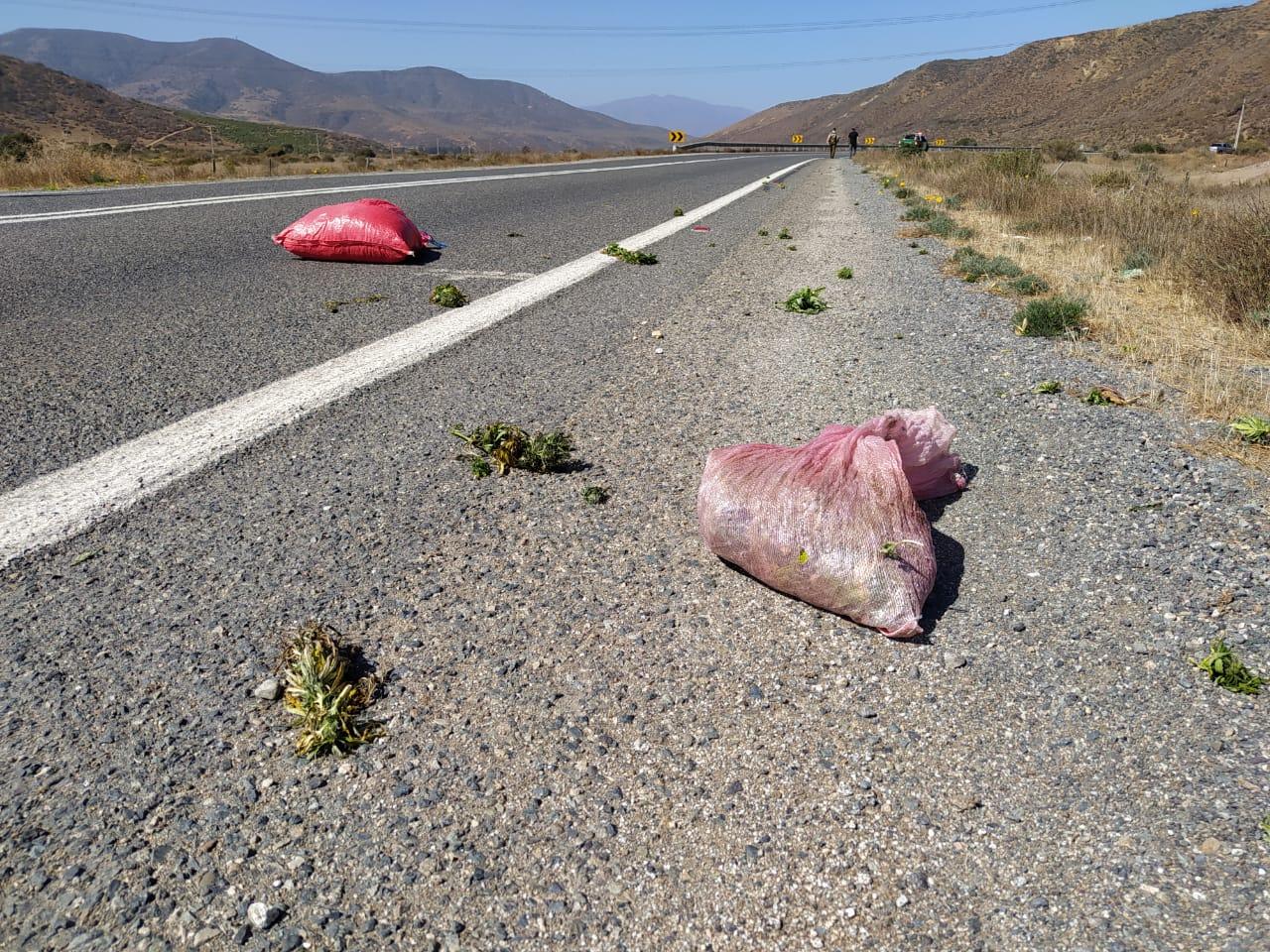 Fiscalía de Los Vilos formalizó a 5 imputados que intentarían deshacerse de sacos con marihuana elaborada en la ruta D 47