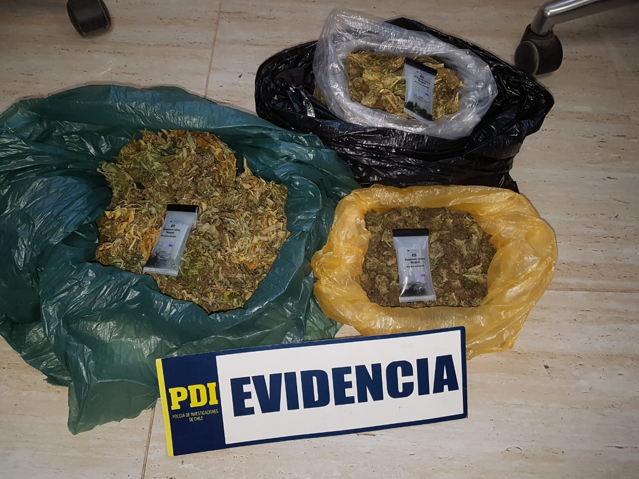 PDI encuentra nuevos cultivos de cannabis que se vincularían con el crimen de Mincha