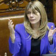 """Presidenta del Senado: """"No podemos enforcar en el 4° retiro la solución a demandas de la ciudadanía"""""""