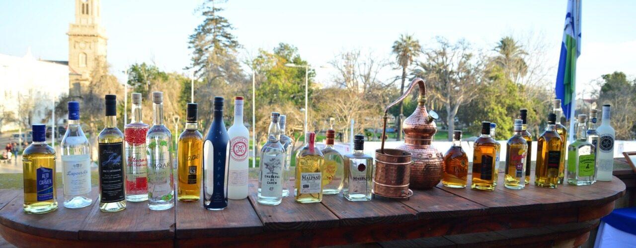 Feria del Pisco llega a la región de Coquimbo este 15, 16 y 17 de septiembre