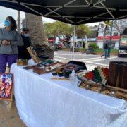 Inauguran feria cultural en Plaza de Armas de Coquimbo