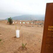 Científicos chilenos publicaron carta contra minera Dominga en revista Science