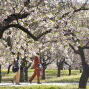 ¿Cuándo y a qué hora comienza la Primavera en el país?