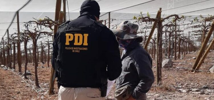 Fiscalizan a trabajadores migrantes en fundos agrícolas de Vicuña y Paihuano