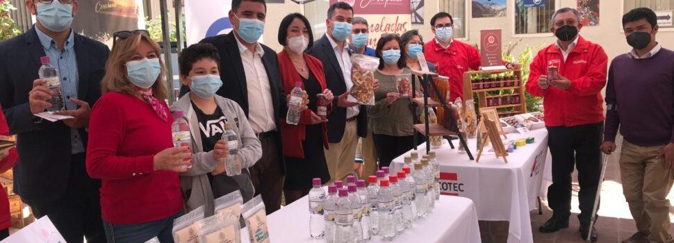 168 micro y pequeñas empresas del Limarí y Choapa serán beneficiadas por el programa Zonas Rezagadas